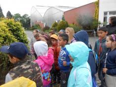 Botanická zahrada v Teplicích